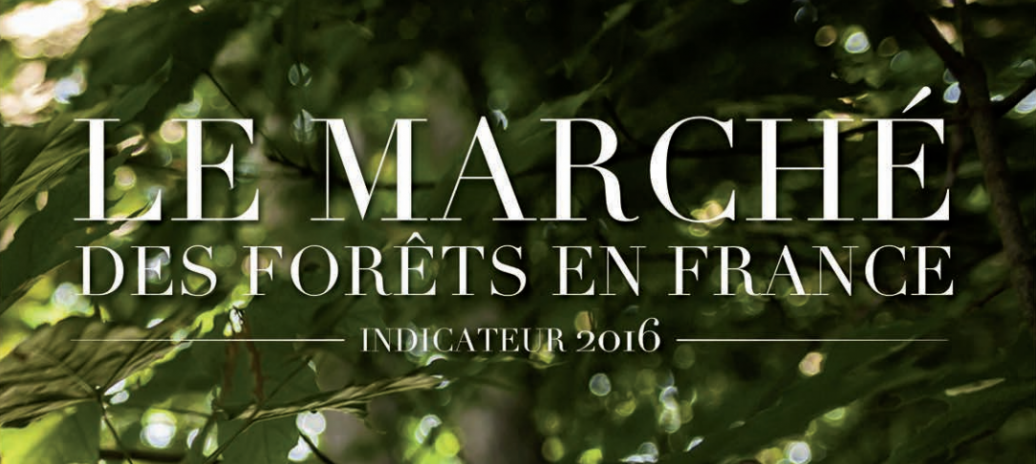 Le marché des forêts 2016 : chiffres clés, structure du marché, acteurs, cartographies, 40 pages, illustrations