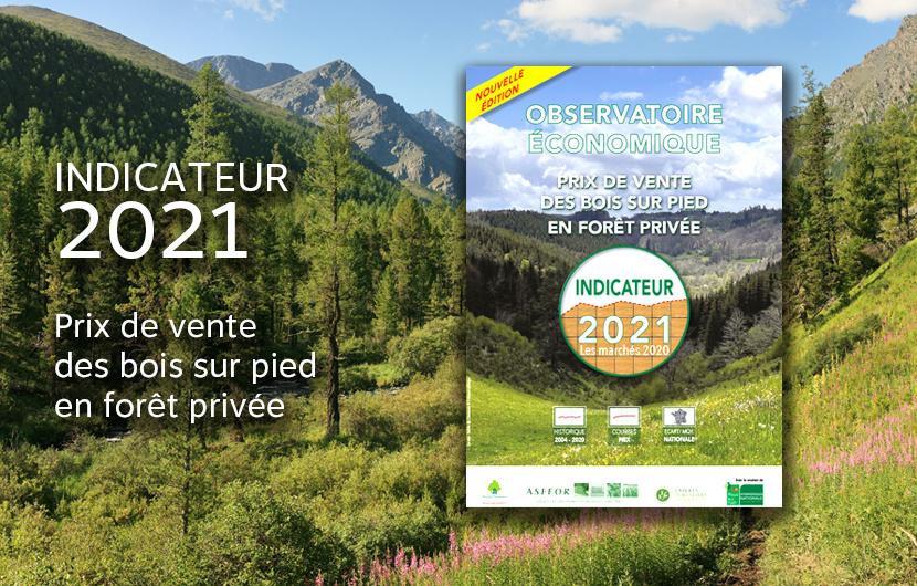 L'édition 2021 de l'Indicateur du prix de vente des bois sur pied en forêt privée est en ligne !