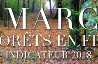 Indicateur du Marché de la Forêt en France 2018