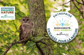 La Société Forestière devient une société engagée pour la nature