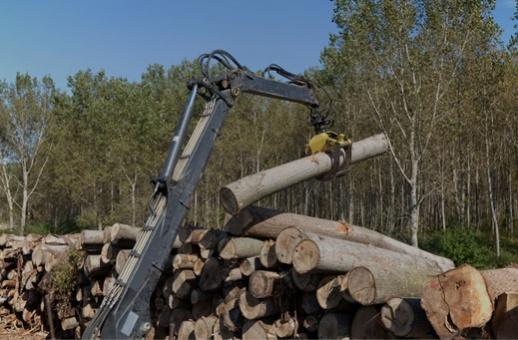 Commercialiser vos bois